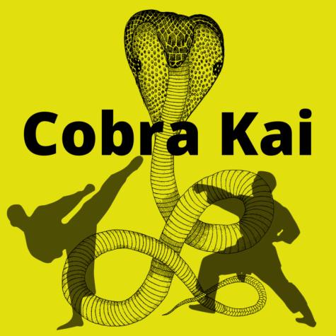 Cobra Kai a Netflix original show that is Kicking the Competition.